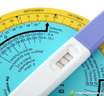 Можно ли забеременеть до овуляции Планирование беременности