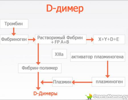 как сдавать анализ на д димер