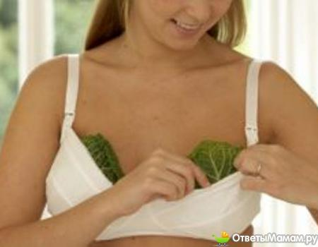 компрессы из капустного листа, лечение лактостаза