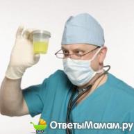повышенные лейкоциты в моче